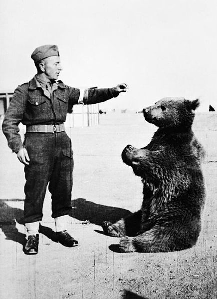 Wojtek with Polish Soldier